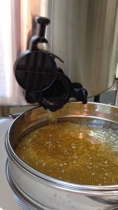 honey being extracted